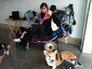Sophie and Cleo with wheels 8-25-12